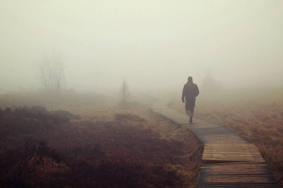 Moor Nebel 900x600